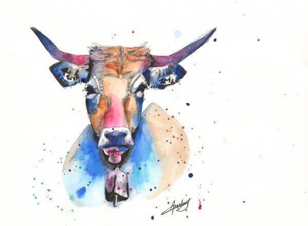 Vache Aubrac, Aquarelle et Feutres, Format A4, Caroline Angelard